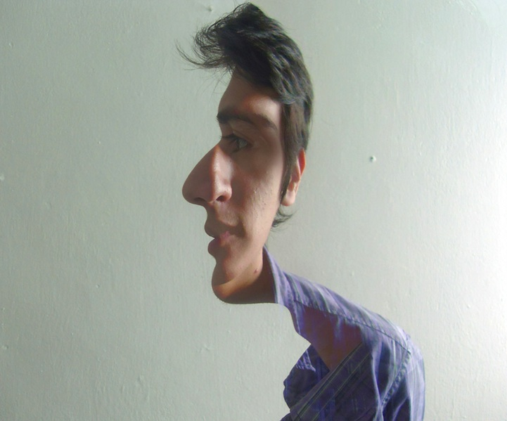 Multidirectional Face Illusions