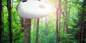 Dormir dans les arbres dans un Baobed treehouse