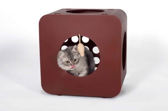 Kitty Kasa