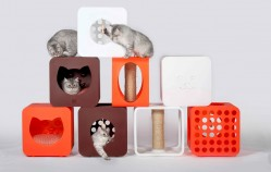 Kitty Kasa – Les modules pour chats