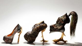 Découvrez les Shocking Shoes by Masaya Kushino