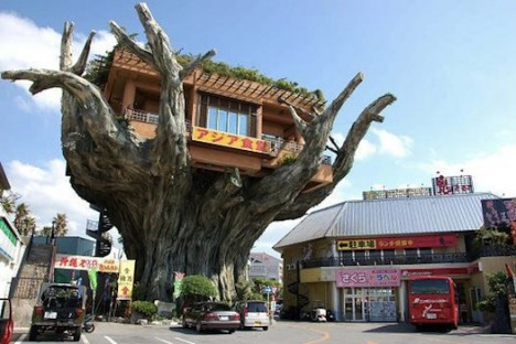 restaurant Treehouse
