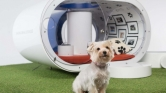Dream Doghouse – La niche by Samsung
