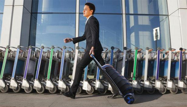 Goobag valise pliable