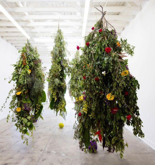 Ochi Projects jardins suspendus Karolina Maszkiewicz