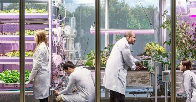 micro-fermes verticales MIT