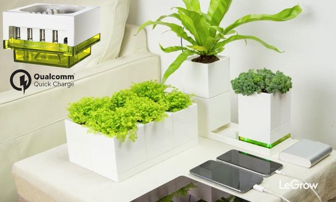 LeGrow jardinières modulaires Lego