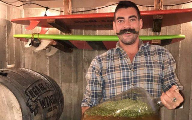 Rebel Coast Winery dévoile un vin infusé à la marijuana