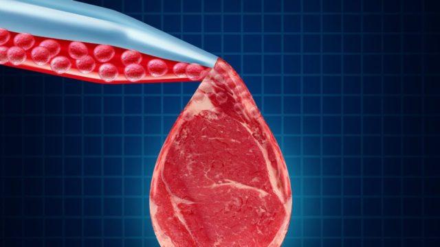 La viande de laboratoire n'est pas de la viande selon l'état du Missouri
