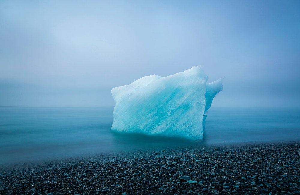 The Nature Conservancy – Découvrez les gagnants de cet étonnant concours de photographie