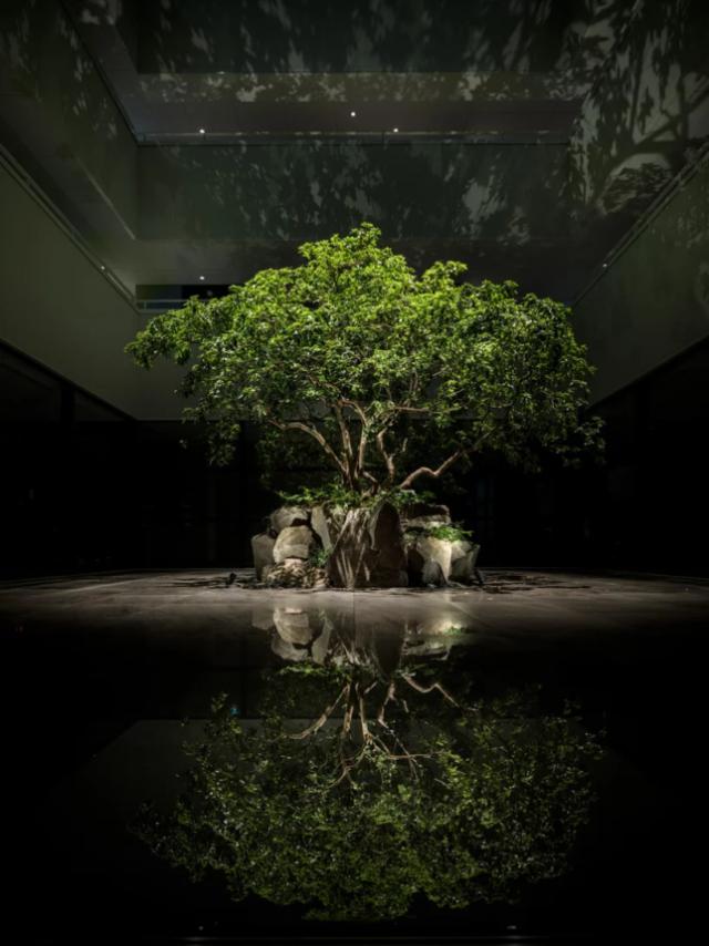 Enso Ango – Le premier hôtel dispersé au monde ouvre au Japon 8