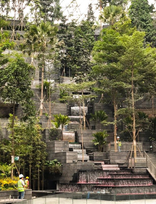 Safdie Architects Installe La Plus Haute Cascade Du0027intérieur Au Monde Dans  Lu0027aéroport
