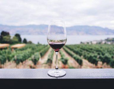 Le vin a à peine changé depuis l'époque romaine, et c'est un problème