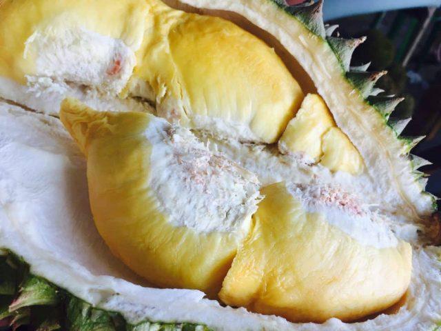 Le durian – Ce qu'il faut savoir sur le fruit le plus odorant du monde 1