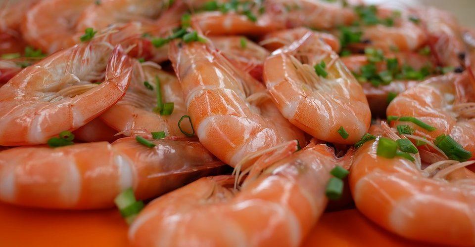 Ce film plastique biodégradable a été créé à partir de crevettes