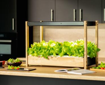Click & Grow installe un potager sur le plan de travail de votre cuisine