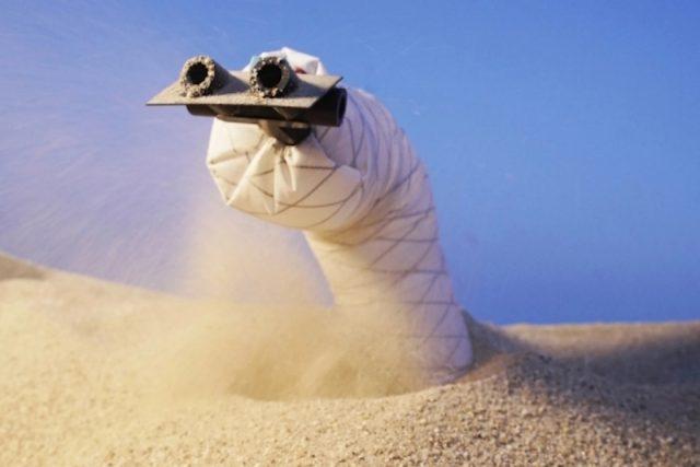 Ce robot serpent qui creuse un tunnel s'inspire de la nature pour garder la tête dans le sable