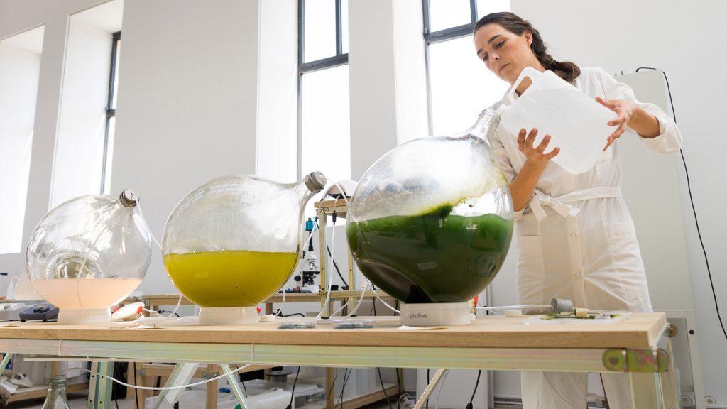 Eric Klarenbeek et Maartje Dros impriment de la vaisselle avec des algues