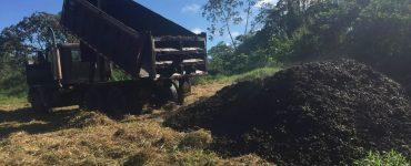 Des déchets de café utilisés pour remettre en état des terres anciennement cultivées