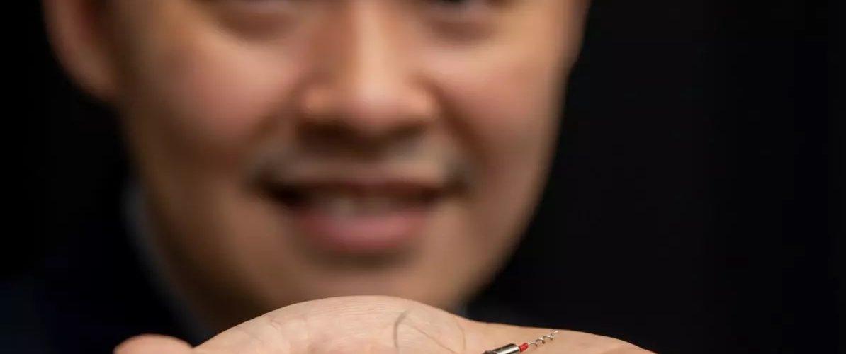 Le sperme de raie à l'origine de la création d'un robot nageur